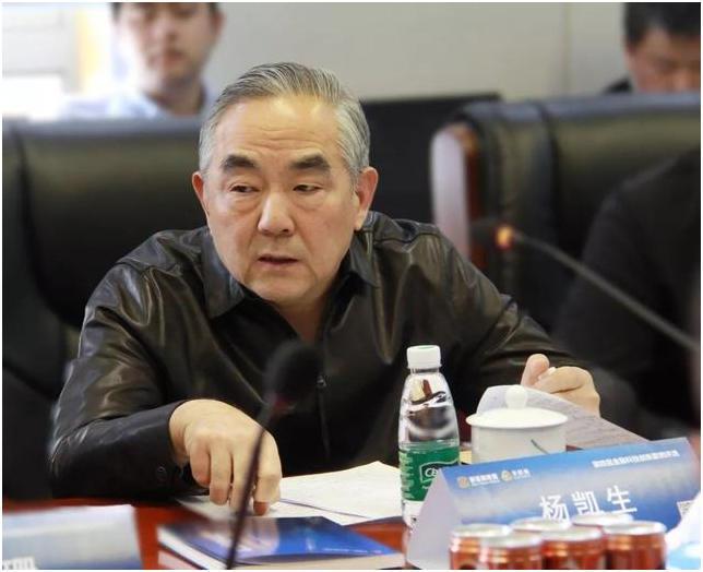 新金融联盟理事长、中国工商银行原行长杨凯生