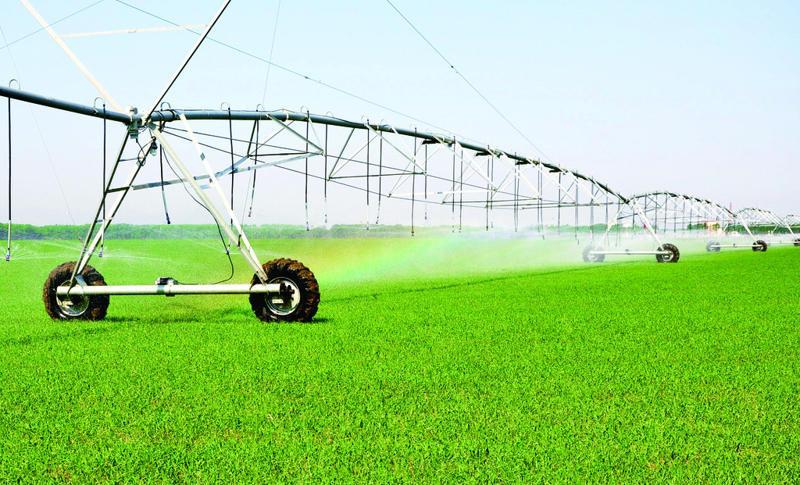农业现代化关键在于产业振兴