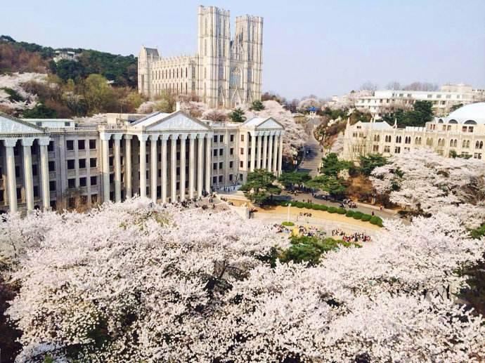 不会韩语真能上韩国庆熙大学MBA吗?